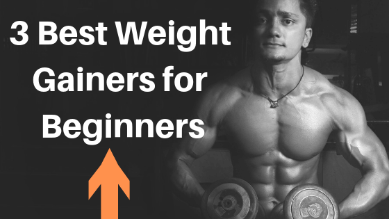 Best Weight Gainers for Beginners